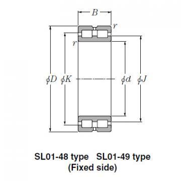Bearing SL01-4838